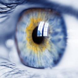 oftalmólogos pamplona